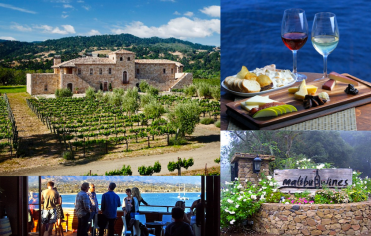Malibu-wine-tour-Santa-Barbara-wine-tours-Los-Angeles-winetasting